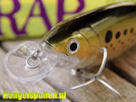 Test Rapala Xrap #13 Jointed (UPDATED MOVIE!!)