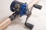 Review Daiwa Bayard 150 jerkbait reel